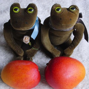 100619_mango_frogs