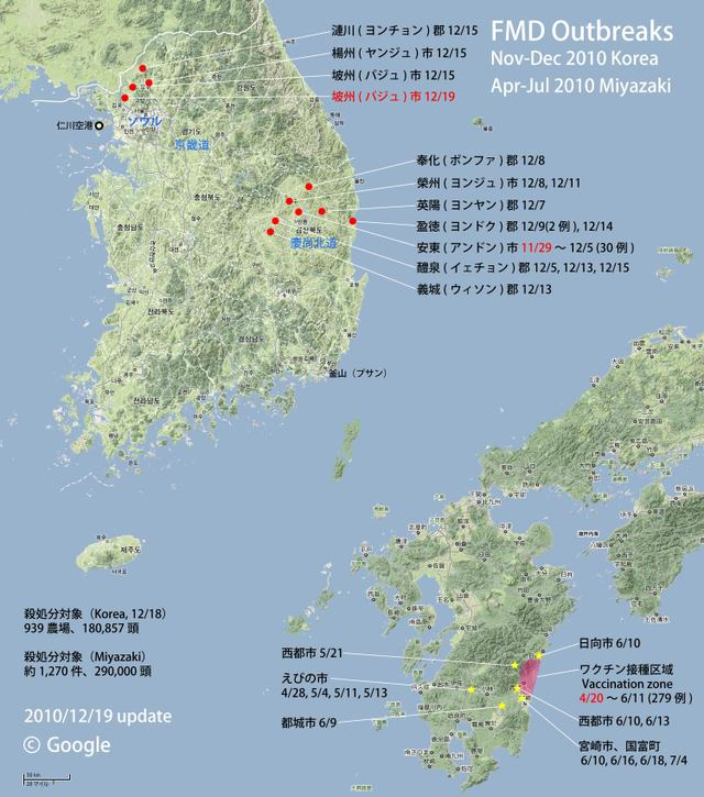Fmd_korea_map_101219