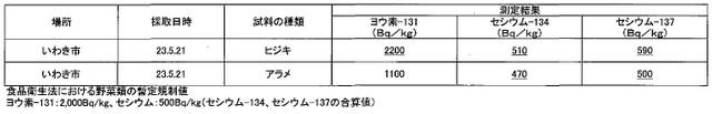110526_fukushima_2