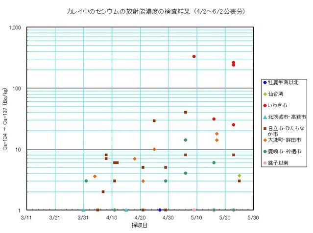 110602_karei