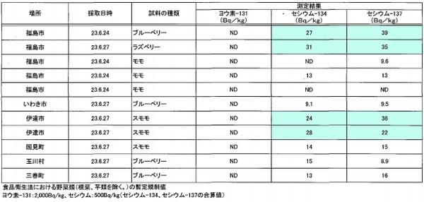 110628_fukushima_2
