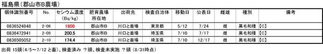 110831_inawara_fukushima3